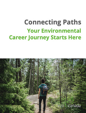 Connecting Paths 2
